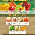 旬野菜定期便